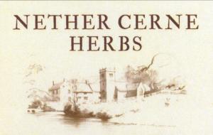 NETHER CERNE HERBS,